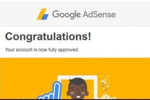 Google Adsese approved