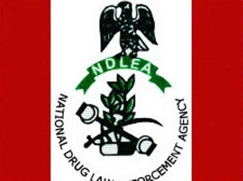 NDLEA Recruitment 2017 And How To Apply
